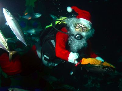 Father Christmas visits London Aquarium