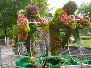 Award for Lambeth's Tour de France floral displays