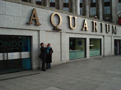 London Aquarium bought by London Eye owners