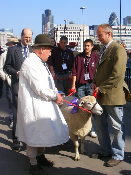 Sheep drive on London Bridge in aid of Lord Mayor's Appeal