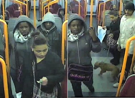 Police want to speak to these youths