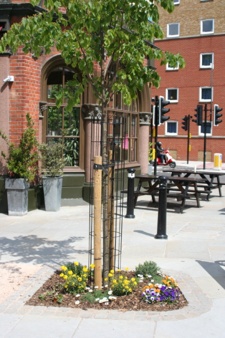 Trinity Street piazza wins Green Corners Award