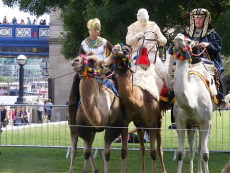 Camel racing in Potters Fields Park