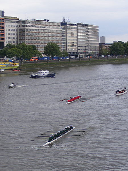 Parliamentary boat race: MPs beat peers
