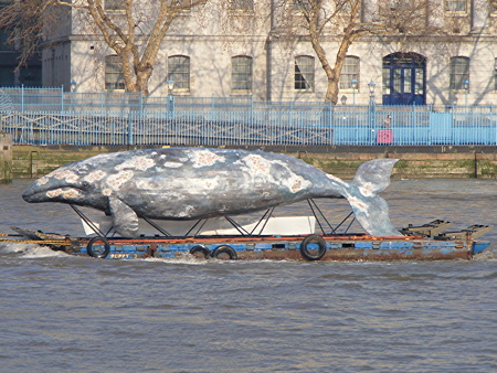 'Whale' on the Thames to highlight plight of endangered species
