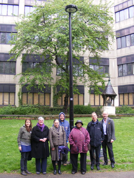 Let there be light! New illumination for Christ Church Garden