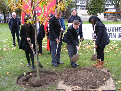 'Friendship tree' planted to promote Anglo-Irish understanding