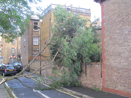 SE1 storm damage in pictures