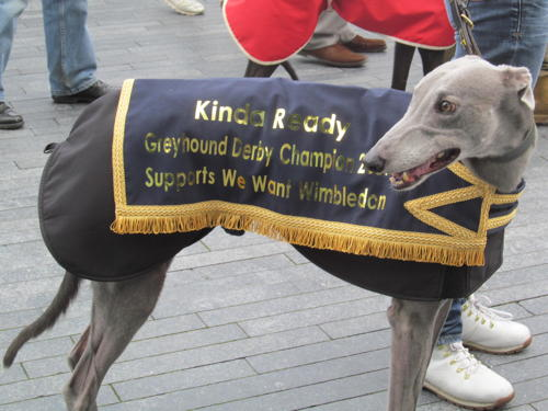 Greyhounds at City Hall as Boris is urged to save Wimbledon track