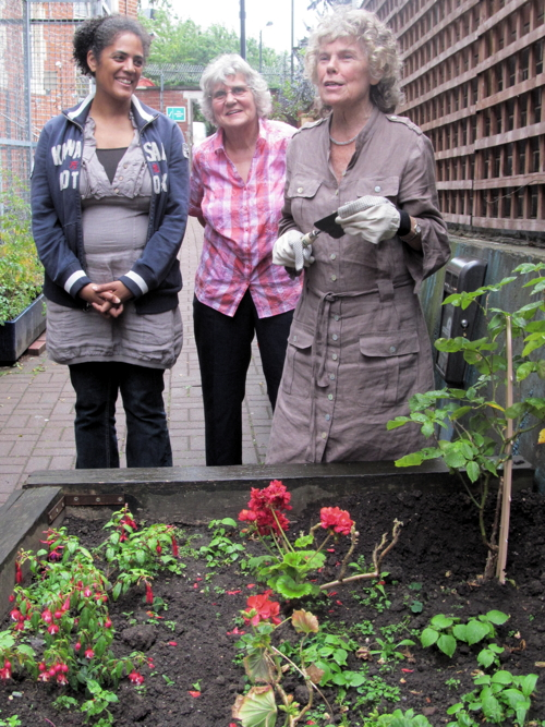 Rose planted to celebrate Waterloo Action Centre's royal award