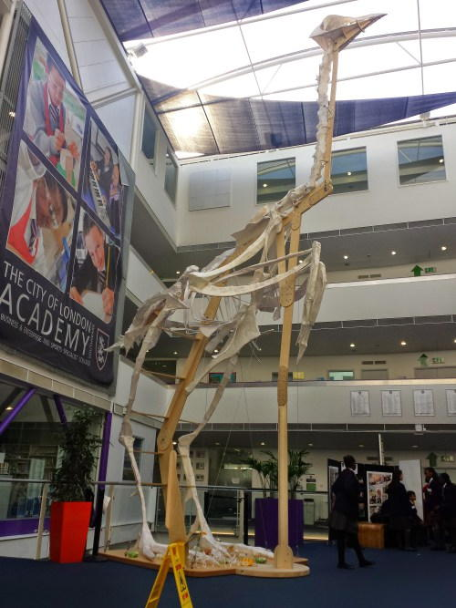 Giant chicken skeleton installed in Bermondsey school foyer