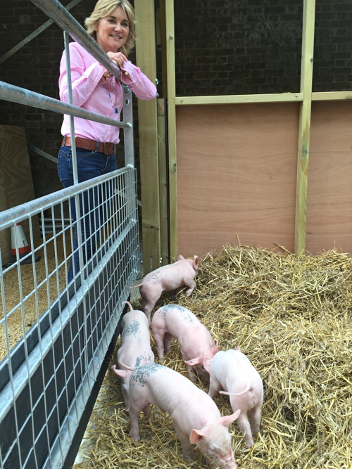 Anthea Turner opens Oasis Farm Waterloo
