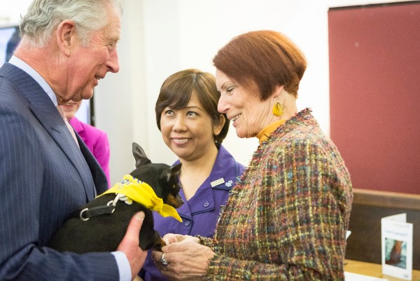 Prince of Wales visits St Thomas' Hospital