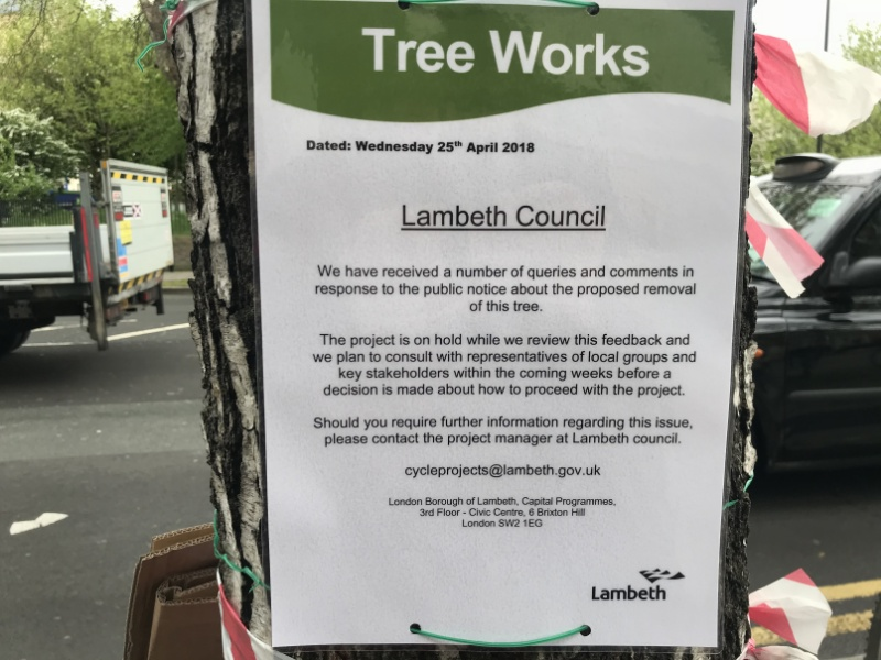 Baylis Road: reprieve for trees due to be felled for bike lane