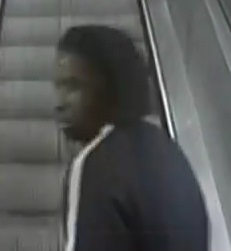 Police appeal after fight at Waterloo Tube Station