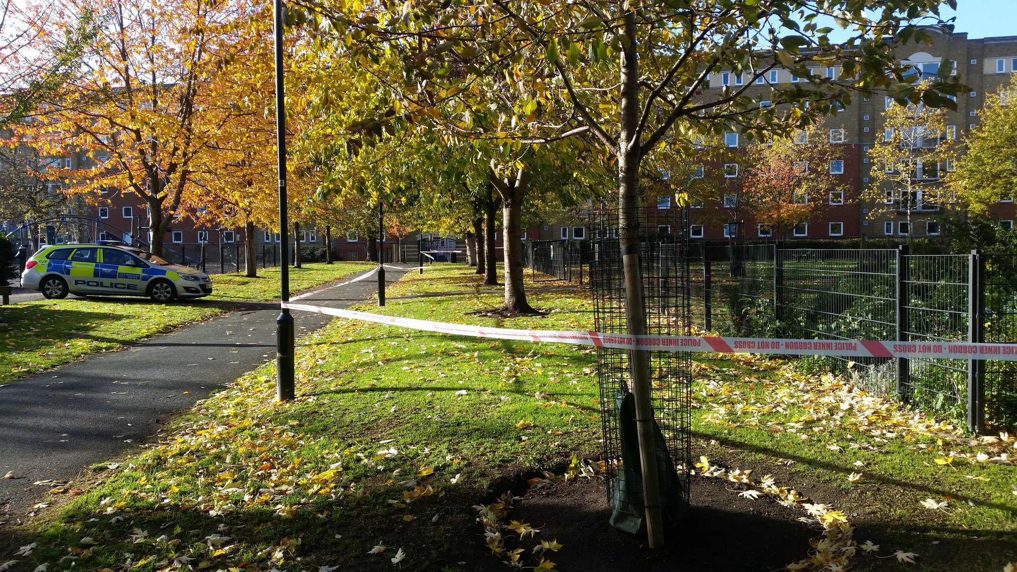 Police investigating 'serious sexual assault' in Tabard Gardens