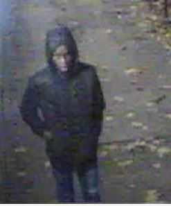 Woman raped near St Thomas' Hospital: police appeal