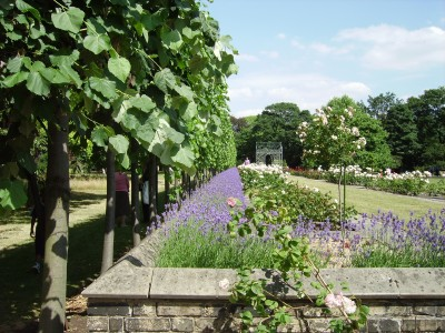 Open Garden Squares Weekend at