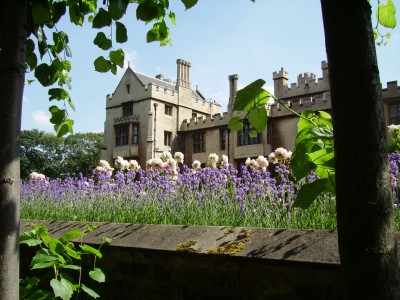 Open Garden Squares Weekend at Lambeth Palace