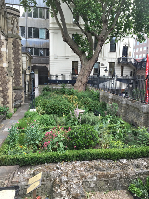 A Tour of Southwark Cathedral Herb Garden at Southwark Cathedral